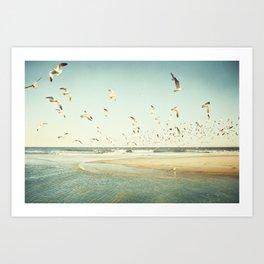 Birds on Beach Photography, Seagulls Flying Coastal Photo, Teal Bird Ocean Picture, Turquoise Aqua Art Print