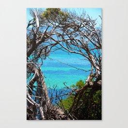 Simons Window Canvas Print