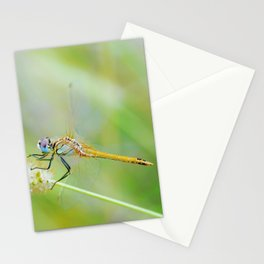 Traces of Spring Stationery Cards