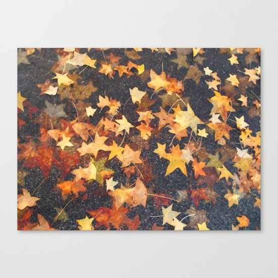 Earth Stars Canvas Print