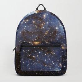 LH 95 stellar nursery in the Large Magellanic Cloud (NASA/ESA Hubble Space Telescope) Backpack