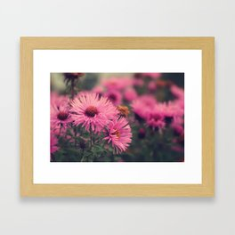telling you stories about a land far away Framed Art Print