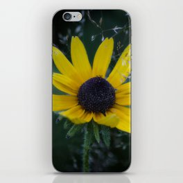 Natural Show Off iPhone Skin