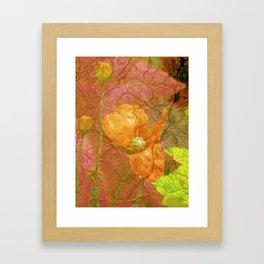 The last Poppys 2 Framed Art Print