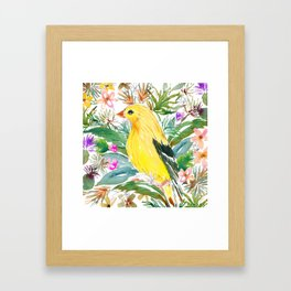 AURORA THE GOLDFINCH Framed Art Print