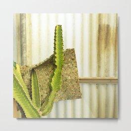 Cactus with Pillow, Joshua Tree Metal Print