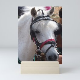 WHITE PONY WITH JAUNTY HAIR STYLE Mini Art Print