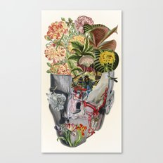 Mindfulness - anatomical collage art by bedelgeuse Canvas Print