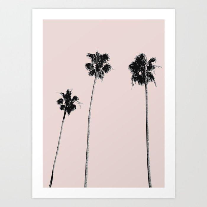 Summer palm three Art Print