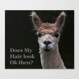 Funny hairstyle alpaca Canvas Print