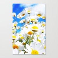 daisy Canvas Prints featuring DAISY by Ylenia Pizzetti