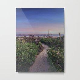 Pathway to Ocean Metal Print
