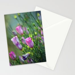 Hibiscus Buds Stationery Cards