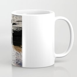 Trickle on Down Coffee Mug
