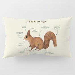 Anatomy of a Squirrel Pillow Sham