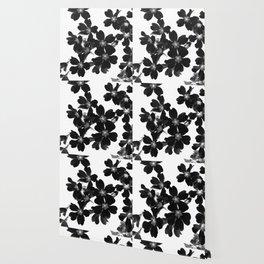 Primrose In BW Wallpaper