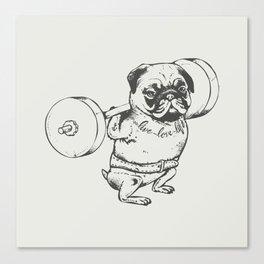 Pug Squats Canvas Print