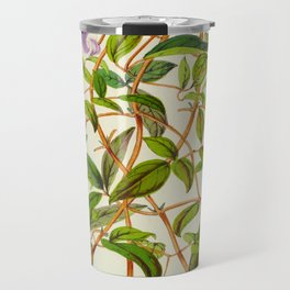 Clematis Campaniflora Vintage Botanical Floral Flower Plant Scientific Illustration Travel Mug