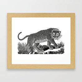 Majestic Leopard Hunts in the Night Framed Art Print