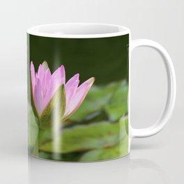 Summer At The Pond Coffee Mug