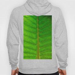 Palm Print Hoody