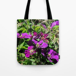 Lingering Effects Tote Bag