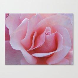 Rose Petal Pink Canvas Print