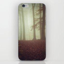 November Light iPhone Skin