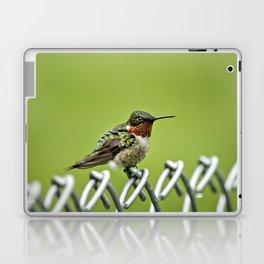 Hummingbird on a Fence Laptop & iPad Skin