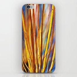 Coloured sticks iPhone Skin