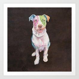 American Bull Terrier Art Print