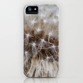 Herbst Pusteblume iPhone Case