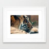 tigger Framed Art Prints featuring Tigger by Josef Roesler