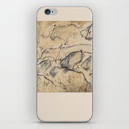 Aurignacian Art iPhone Skin