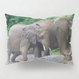 Mud Bath Pillow Sham