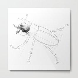 Beetle Technical Sketch: Reddish-Brown Stag Beetle Specimen Metal Print