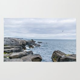 Icelandic Shore Rug