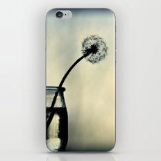 dandelion XX iPhone & iPod Skin