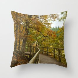 Walkway on the Keswick disused railway path to Penrith above the River Greta. Lake District, UK. Throw Pillow