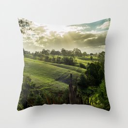 Strzelecki Station #1 Throw Pillow