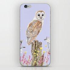 Meadow Barn Owl iPhone & iPod Skin