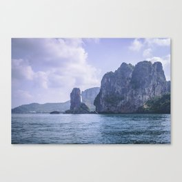 Spot the Long Tail Canvas Print