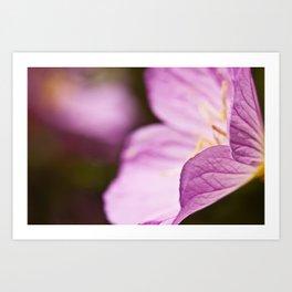 Summer Flower Art Print