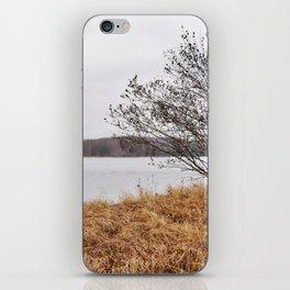 Peaceful lake view in November iPhone Skin