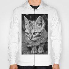 Kitty Cat Hoody