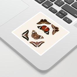 Vintage Butterfly Chart III Sticker