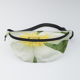 White Wild Rose With Bee Fanny Pack