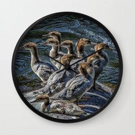 A Bouquet of Mergansers Wall Clock