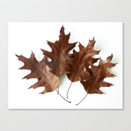 Autumnal Love Canvas Print