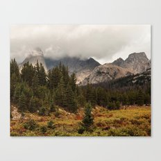 Moody Morning in the Wyoming Wilderness Canvas Print
